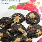 Trader Joe's Dark Chocolate Peanut Butter Cup Cookies