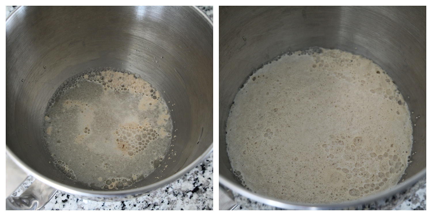 Showing how to proof yeast